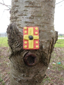 Legionary's shield (part I) ...