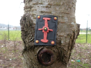 Legionaries shield (part II) ...